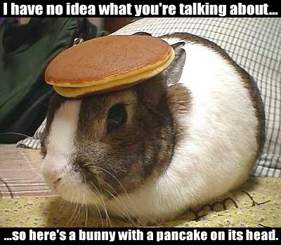 Click image for larger version  Name:1862747-bunnypancake.jpg Views:107 Size:47.5 KB ID:5719