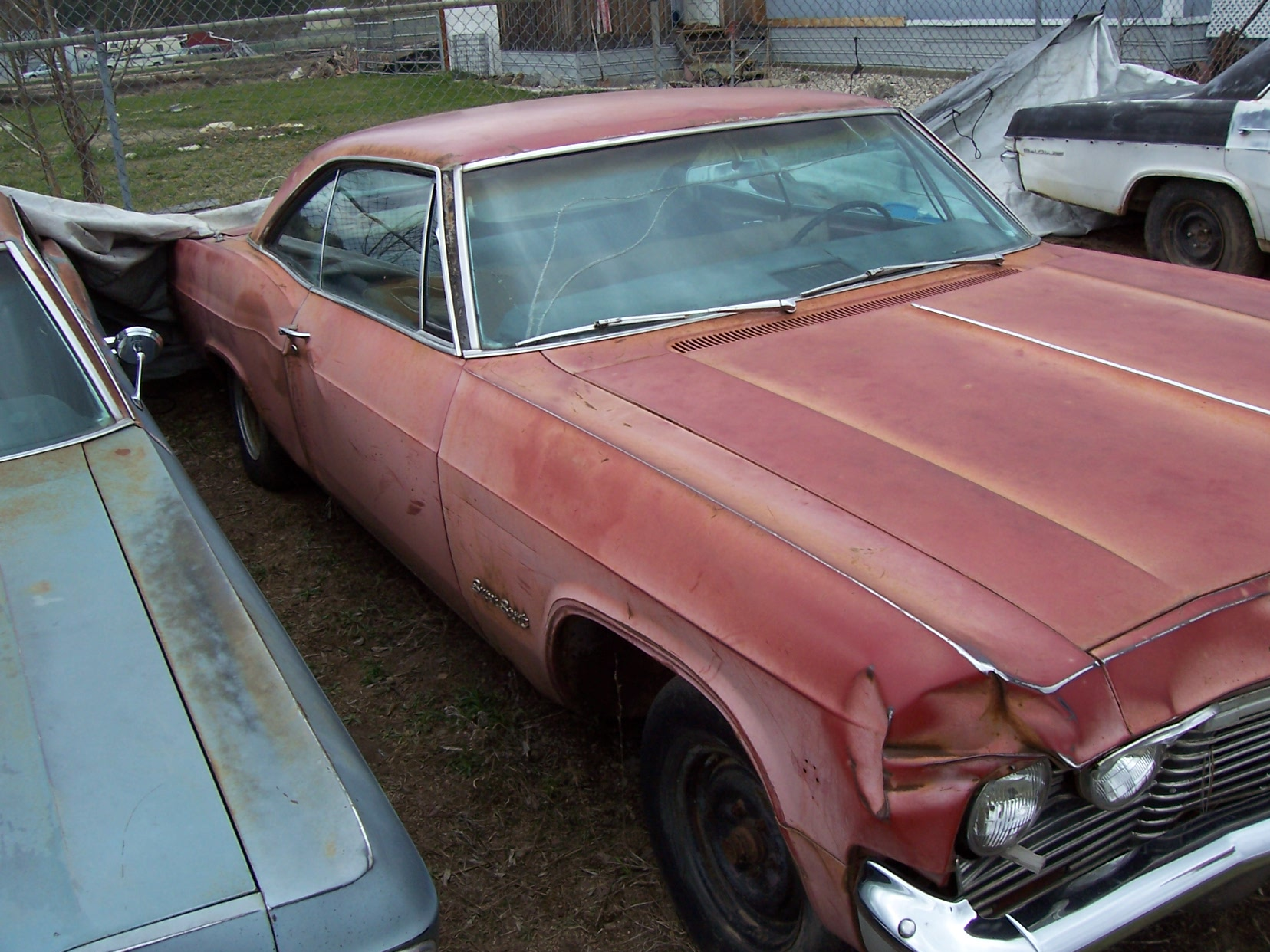 Click image for larger version  Name:65 impalas 001.jpg Views:110 Size:491.4 KB ID:64590