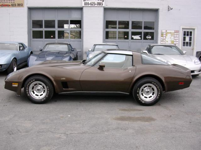 Click image for larger version  Name:Brown vette driver.jpeg Views:112 Size:41.4 KB ID:11982