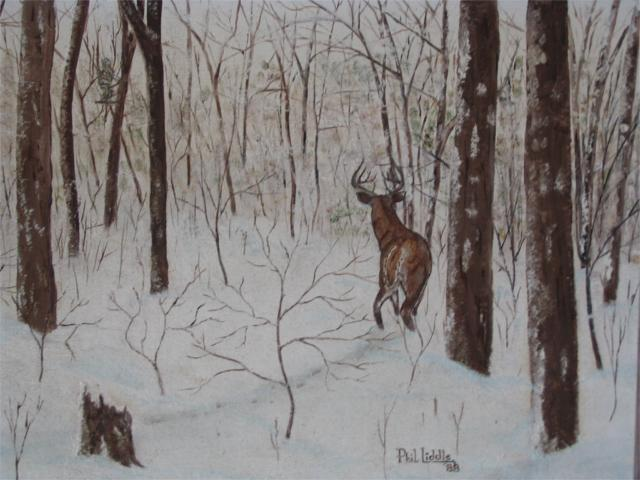 Click image for larger version  Name:deer painting.jpg Views:141 Size:47.7 KB ID:11207
