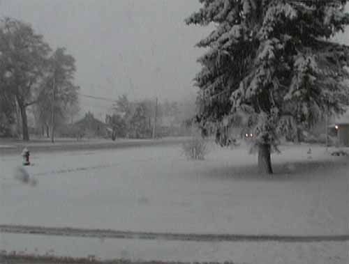 Click image for larger version  Name:first snow.jpg Views:147 Size:16.6 KB ID:3141
