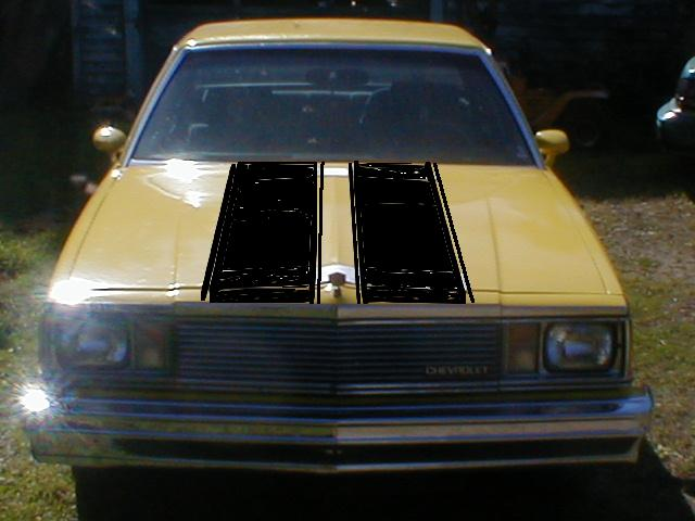 Click image for larger version  Name:hood stripes.jpg Views:3749 Size:36.1 KB ID:2631
