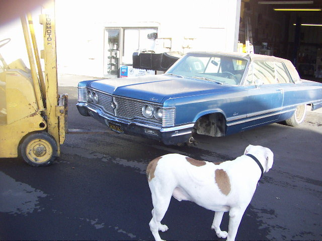 Click image for larger version  Name:imperial with dog.JPG Views:107 Size:123.6 KB ID:11963