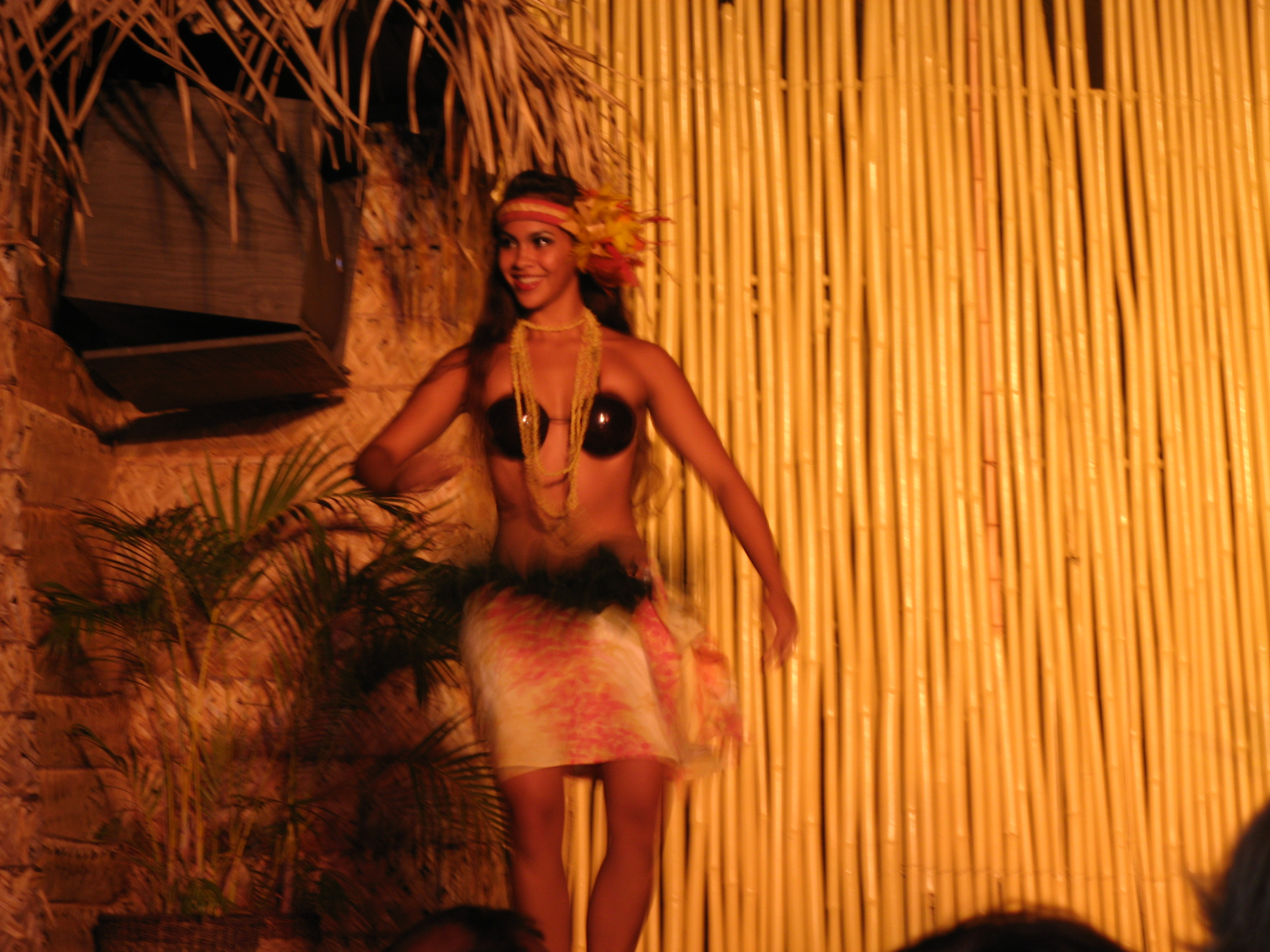 Click image for larger version  Name:Maui 09 0084.jpg Views:79 Size:1.45 MB ID:55946