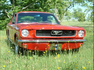 Click image for larger version  Name:mustang close up front.jpg Views:99 Size:39.5 KB ID:217