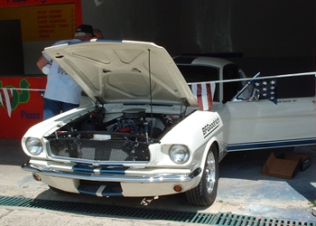 Click image for larger version  Name:mustang.jpg Views:144 Size:75.4 KB ID:3825
