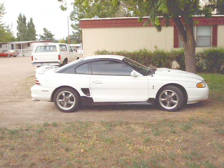 Click image for larger version  Name:Mustang side view.JPG Views:127 Size:119.9 KB ID:31467