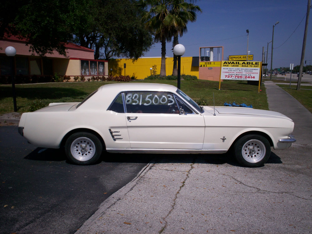 Click image for larger version  Name:mustang_side.jpg Views:66 Size:199.7 KB ID:23390