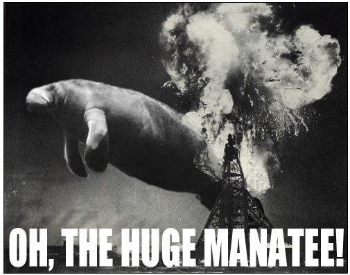 Click image for larger version  Name:ohTheHugeManatee.jpg Views:206 Size:44.2 KB ID:32265