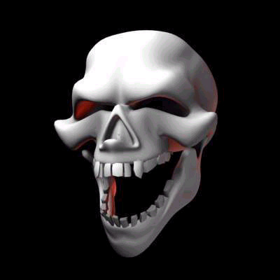 Click image for larger version  Name:skull04.jpg Views:85 Size:33.2 KB ID:5943