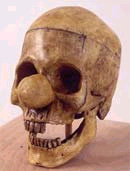 Click image for larger version  Name:skull05.jpg Views:84 Size:24.5 KB ID:5944