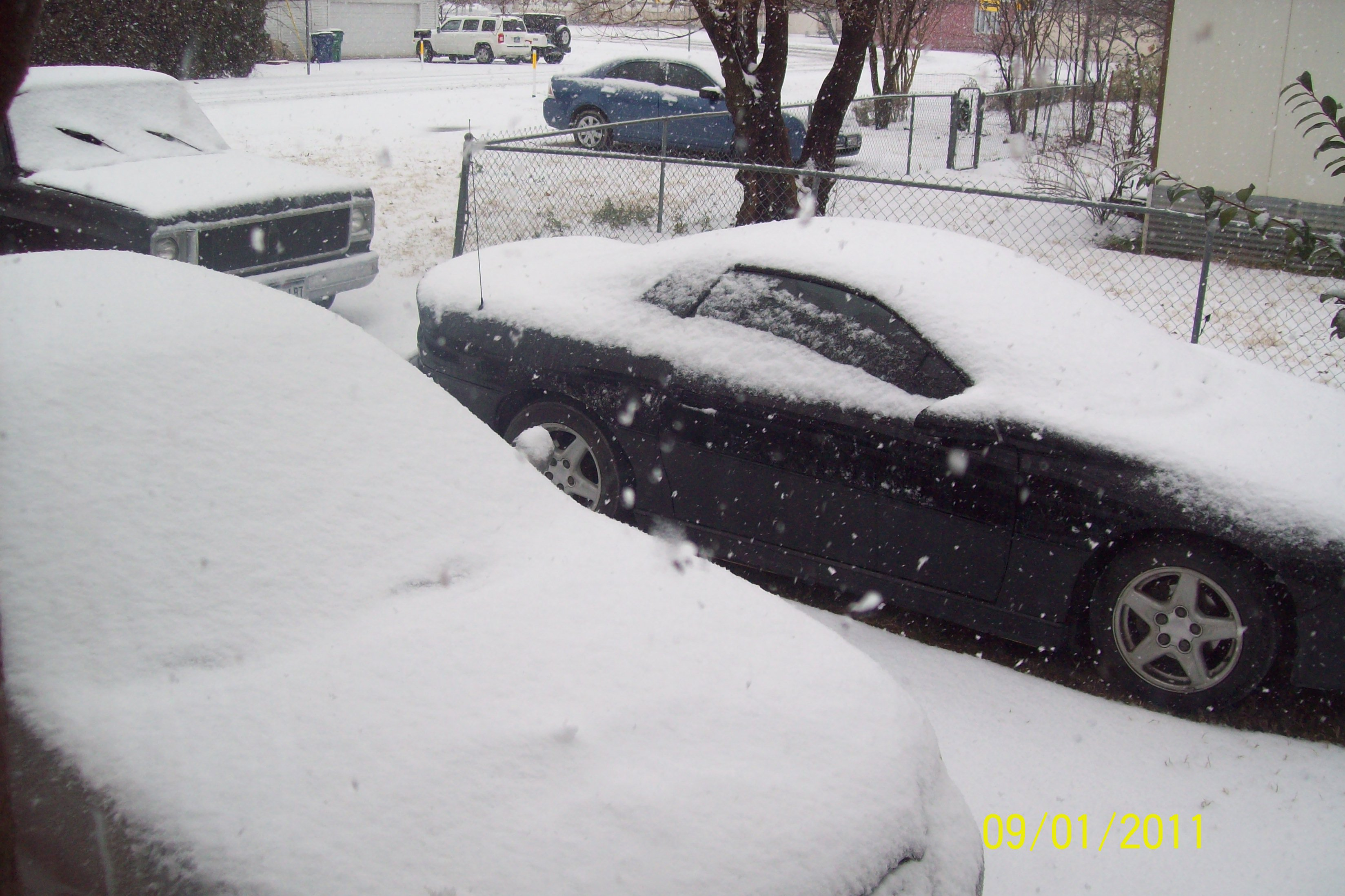 Click image for larger version  Name:snow.jpg Views:100 Size:928.9 KB ID:55930