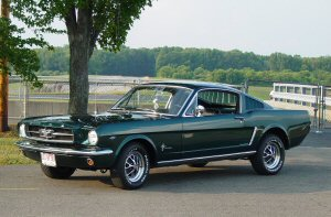 Click image for larger version  Name:stang 1.jpg Views:332 Size:18.3 KB ID:3501