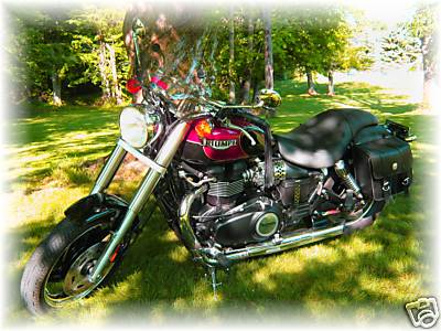Click image for larger version  Name:Triumph.jpg Views:183 Size:32.3 KB ID:74323