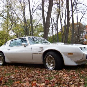 fall 2011 79 trans am 4SPEED